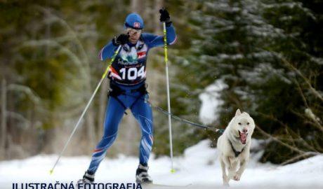 Majstrovstvá Sveta FISTC na snehu